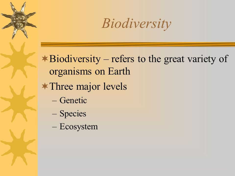 Factors Prone to Extinction  Specific food requirements  Specific habitat or nesting requirements  High on food chain or food web –These animals are more vulnerable to pollution  Migration  Reproduce a low rate  Limited habitat range  Interference with human activities