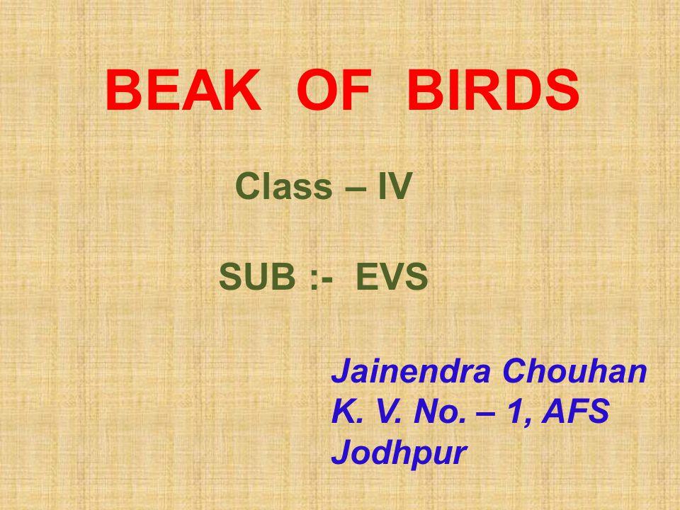 BEAK OF BIRDS Class – IV SUB :- EVS Jainendra Chouhan K. V. No. – 1, AFS Jodhpur
