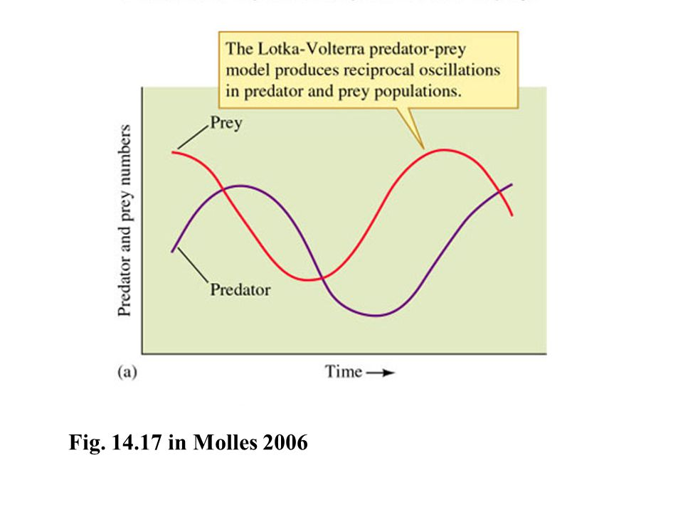 Fig. 14.17 in Molles 2006