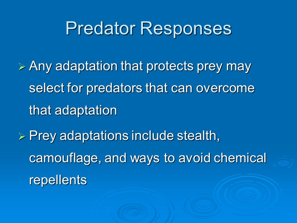 Predator Responses  Any adaptation that protects prey may select for predators that can overcome that adaptation  Prey adaptations include stealth, camouflage, and ways to avoid chemical repellents