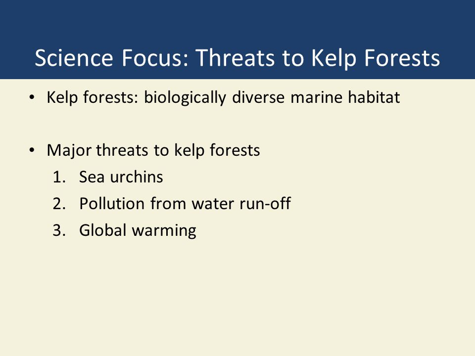 Science Focus: Threats to Kelp Forests Kelp forests: biologically diverse marine habitat Major threats to kelp forests 1.Sea urchins 2.Pollution from water run-off 3.Global warming