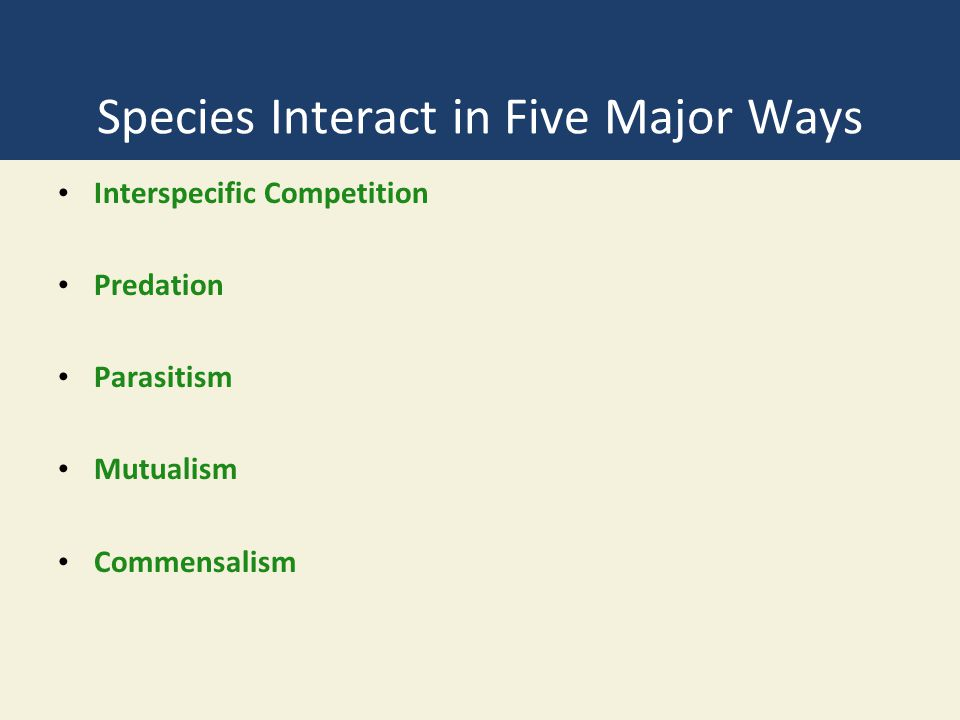 Three Big Ideas 1.Certain interactions among species affect their use of resources and their population sizes.
