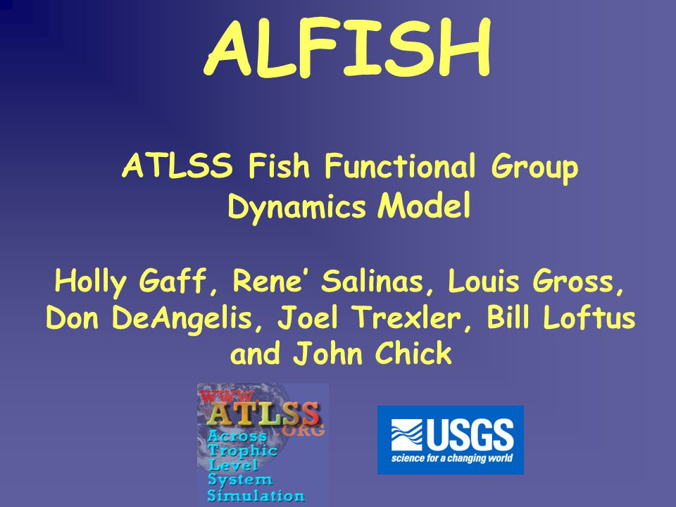ATLSS Fish Functional Group Dynamics Model ALFISH Holly Gaff, Rene' Salinas, Louis Gross, Don DeAngelis, Joel Trexler, Bill Loftus and John Chick