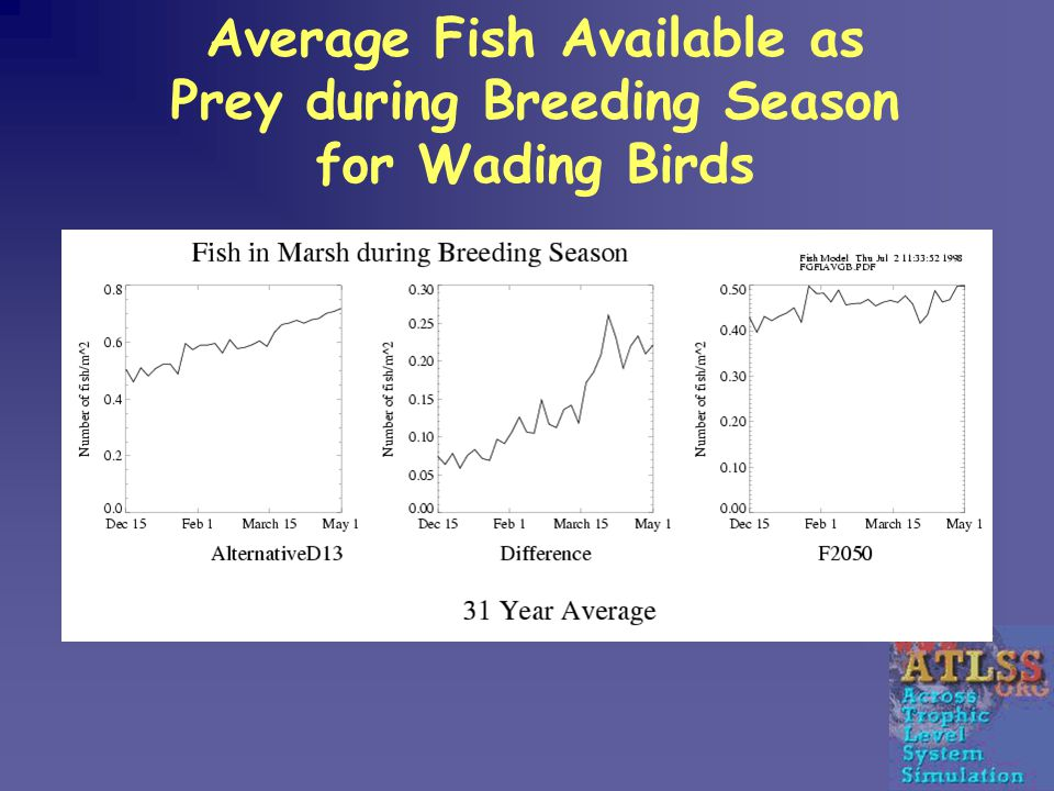 Average Fish Available as Prey during Breeding Season for Wading Birds