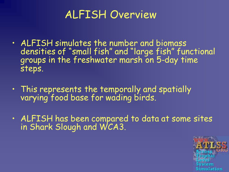 ALFISH Overview ALFISH simulates the number and biomass densities of small fish and large fish functional groups in the freshwater marsh on 5-day time steps.