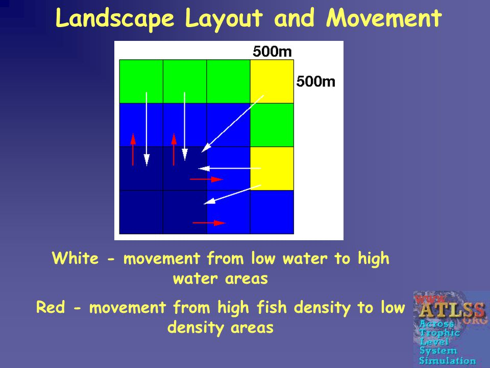 Landscape Layout and Movement White - movement from low water to high water areas Red - movement from high fish density to low density areas