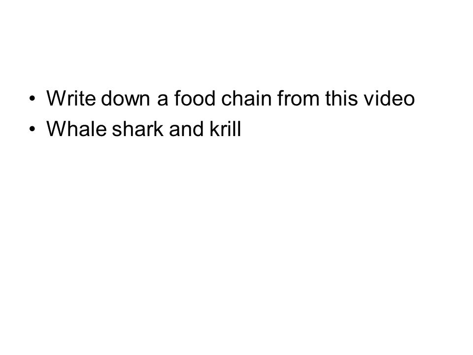 Write down a food chain from this video Whale shark and krill