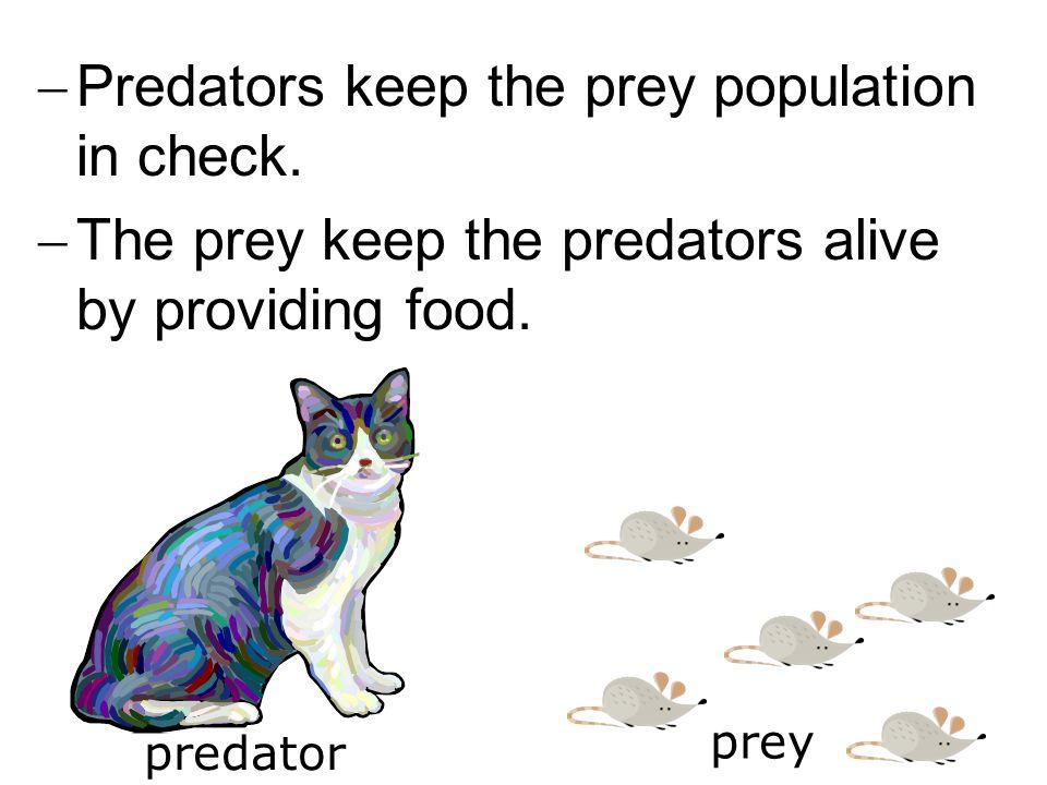  Predators keep the prey population in check.  The prey keep the predators alive by providing food. predator prey