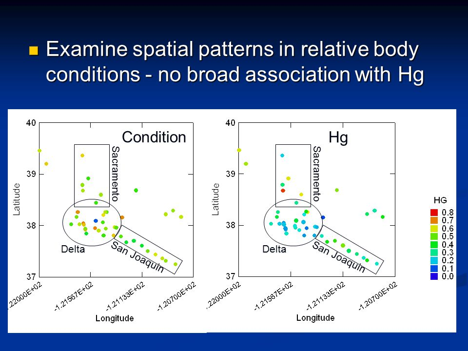 Examine spatial patterns in relative body conditions - no broad association with Hg Examine spatial patterns in relative body conditions - no broad association with Hg Condition Hg Delta San Joaquin Sacramento Delta San Joaquin Sacramento