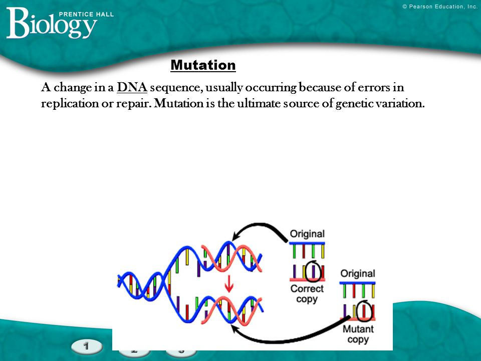 What else can cause variation other than mutations.