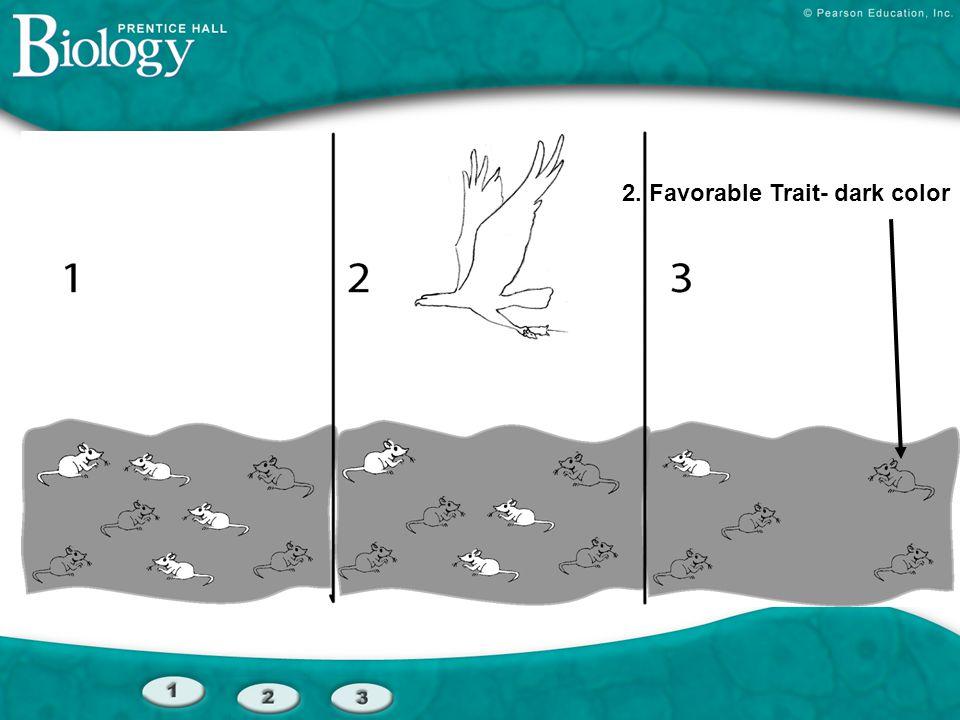 2. Favorable Trait- dark color