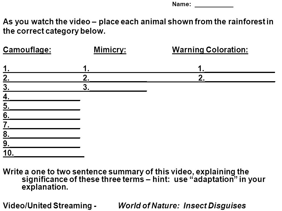 Name: ___________ As you watch the video – place each animal shown from the rainforest in the correct category below.