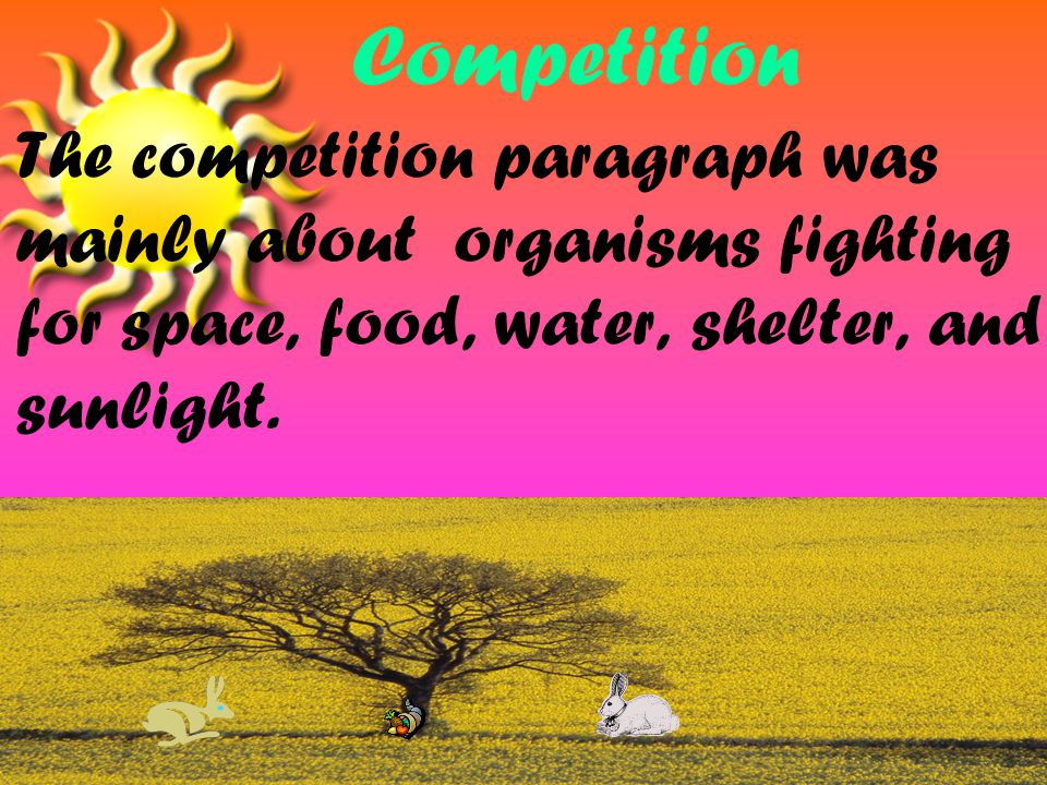 The competition paragraph was mainly about organisms fighting for space, food, water, shelter, and sunlight.