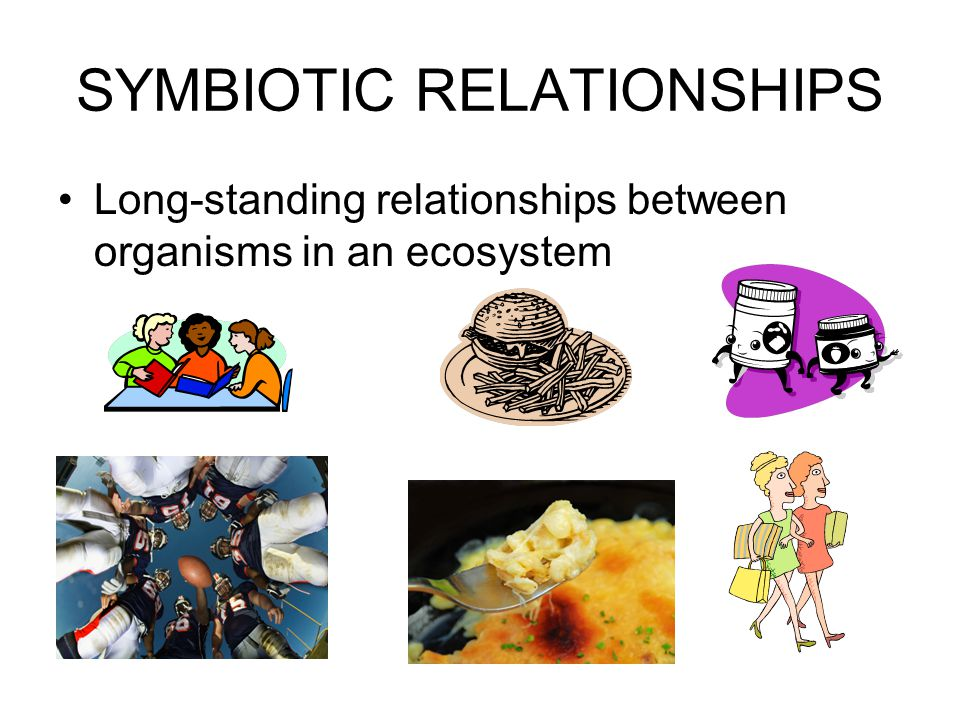 SYMBIOTIC RELATIONSHIPS Long-standing relationships between organisms in an ecosystem