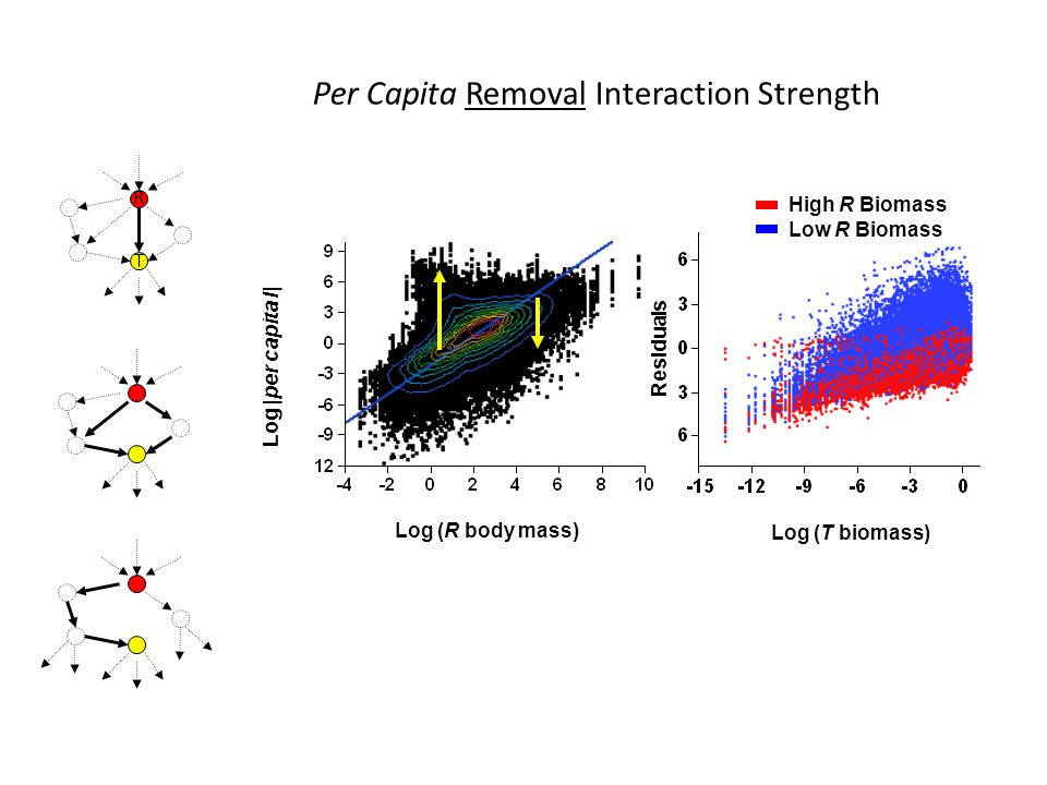 Log (R body mass) Log |per capita I| Per Capita Interaction Strength Low R Biomass High R Biomass Residuals Log (T biomass) Per Capita Removal Interaction Strength R T