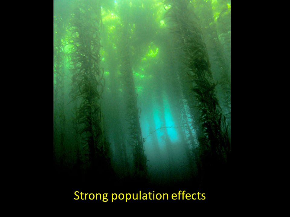 Strong population effects