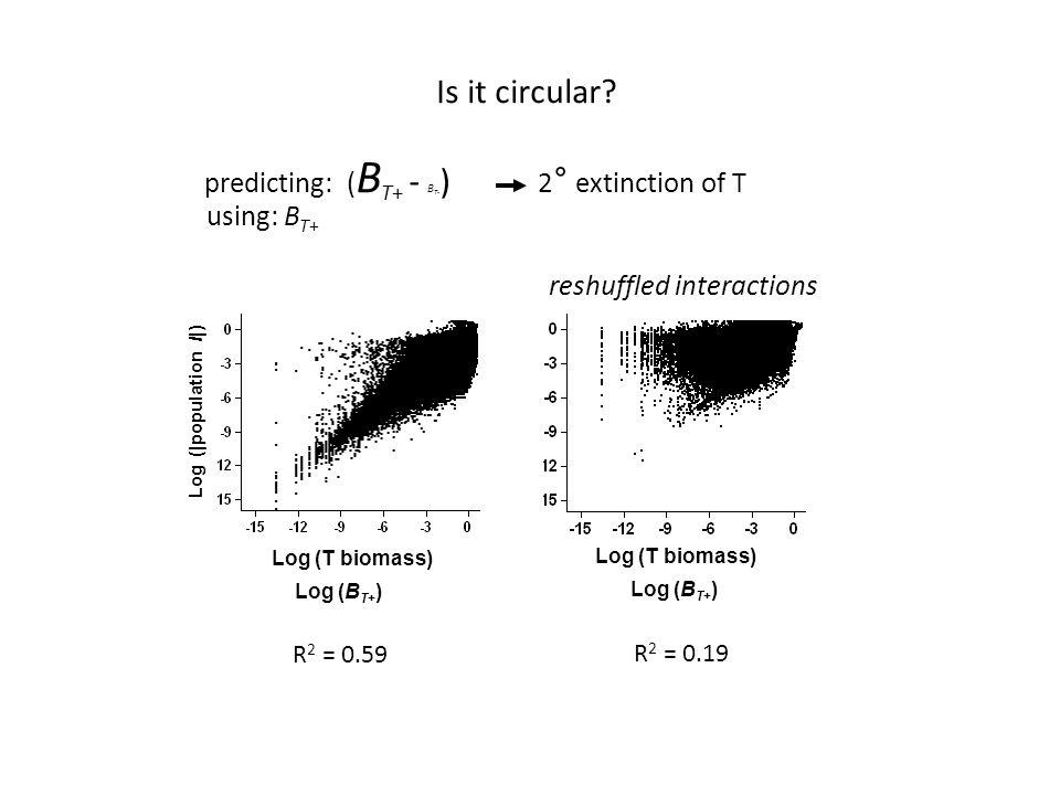Is it circular.