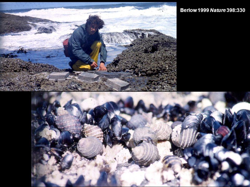 Berlow 1999 Nature 398:330