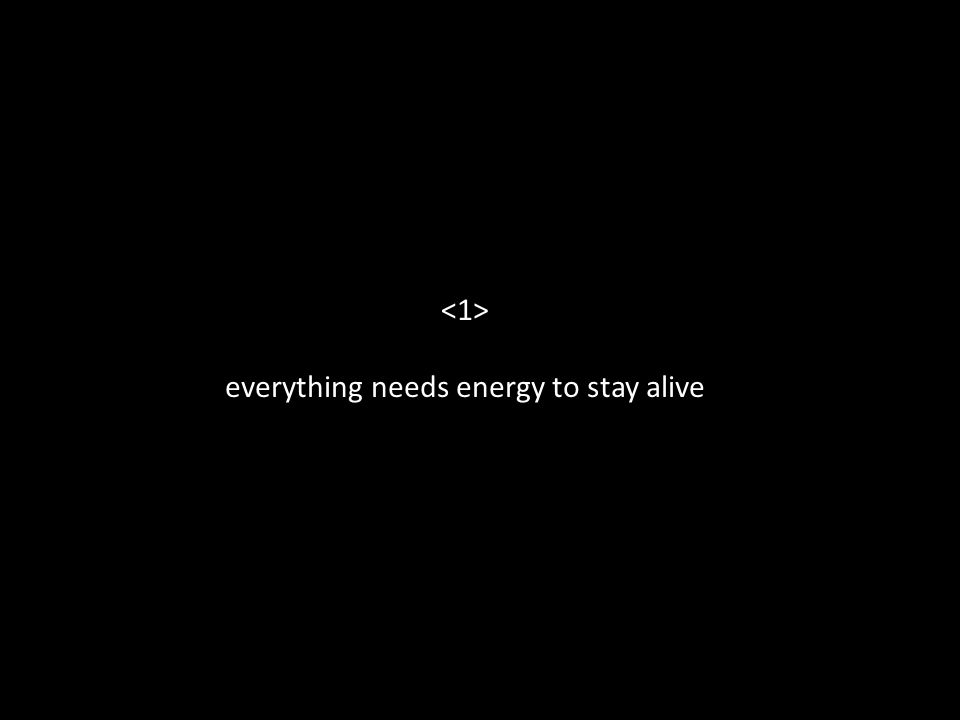 everything needs energy to stay alive
