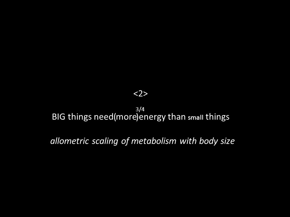 BIG things need more energy than small things ( ) 3/4 allometric scaling of metabolism with body size
