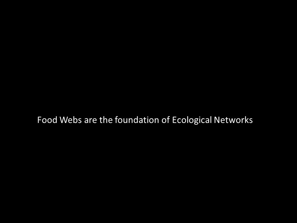 Food Webs are the foundation of Ecological Networks