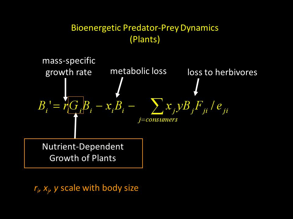 Nutrient-Dependent Growth of Plants Bioenergetic Predator-Prey Dynamics (Plants) mass-specific growth rate metabolic loss loss to herbivores r i, x j, y scale with body size