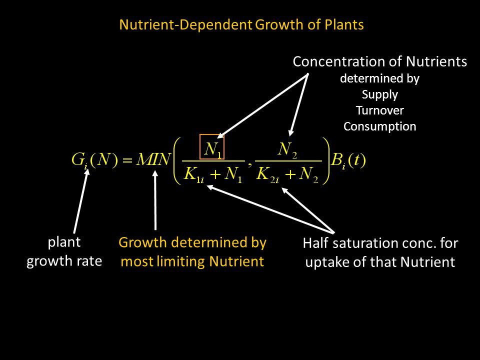 Nutrient-Dependent Growth of Plants Growth determined by most limiting Nutrient plant growth rate Concentration of Nutrients determined by Supply Turnover Consumption Half saturation conc.