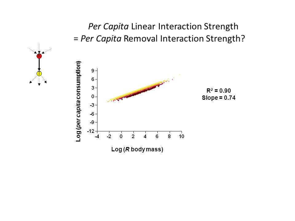 R 2 = 0.90 Slope = 0.74 Log (per capita consumption) Per Capita Linear Interaction Strength Log (R body mass) R T = Per Capita Removal Interaction Strength