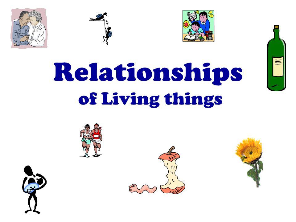Relationships of Living things