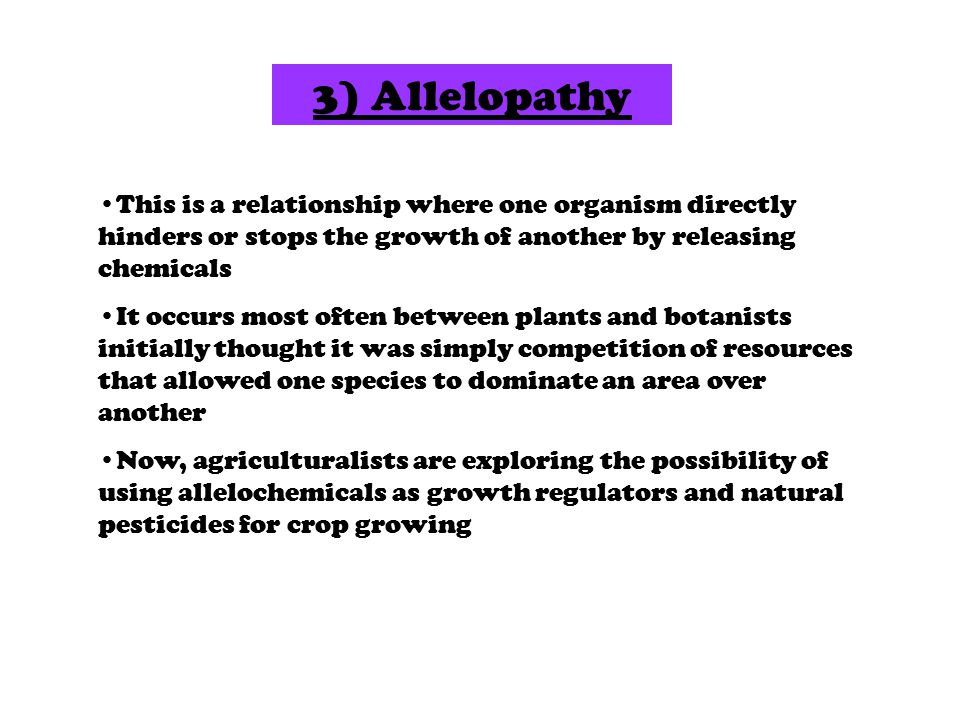 3) Allelopathy This is a relationship where one organism directly hinders or stops the growth of another by releasing chemicals It occurs most often between plants and botanists initially thought it was simply competition of resources that allowed one species to dominate an area over another Now, agriculturalists are exploring the possibility of using allelochemicals as growth regulators and natural pesticides for crop growing