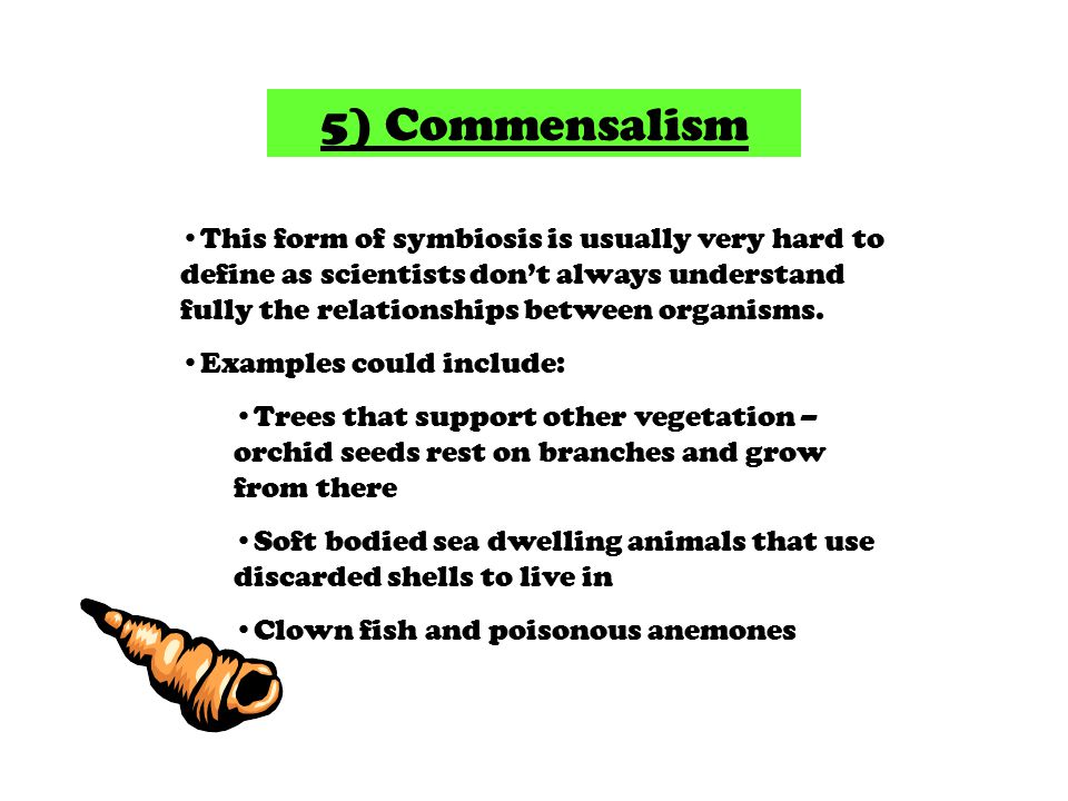 5) Commensalism This form of symbiosis is usually very hard to define as scientists don't always understand fully the relationships between organisms.