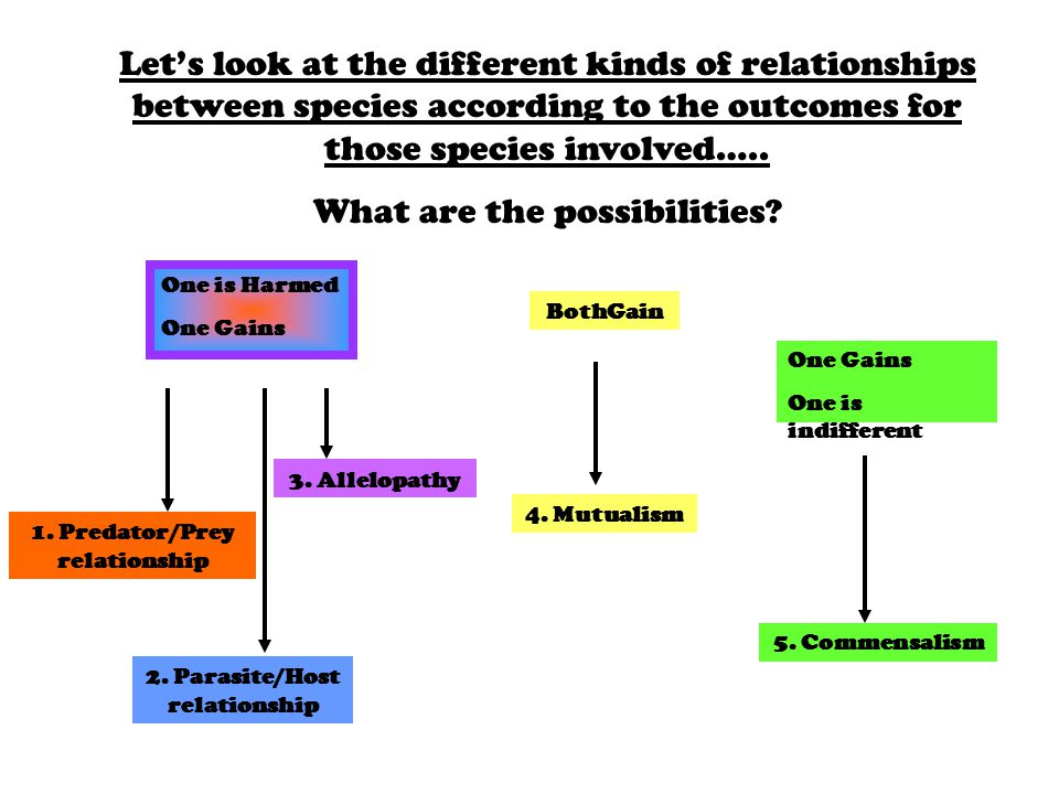 Let's look at the different kinds of relationships between species according to the outcomes for those species involved…..