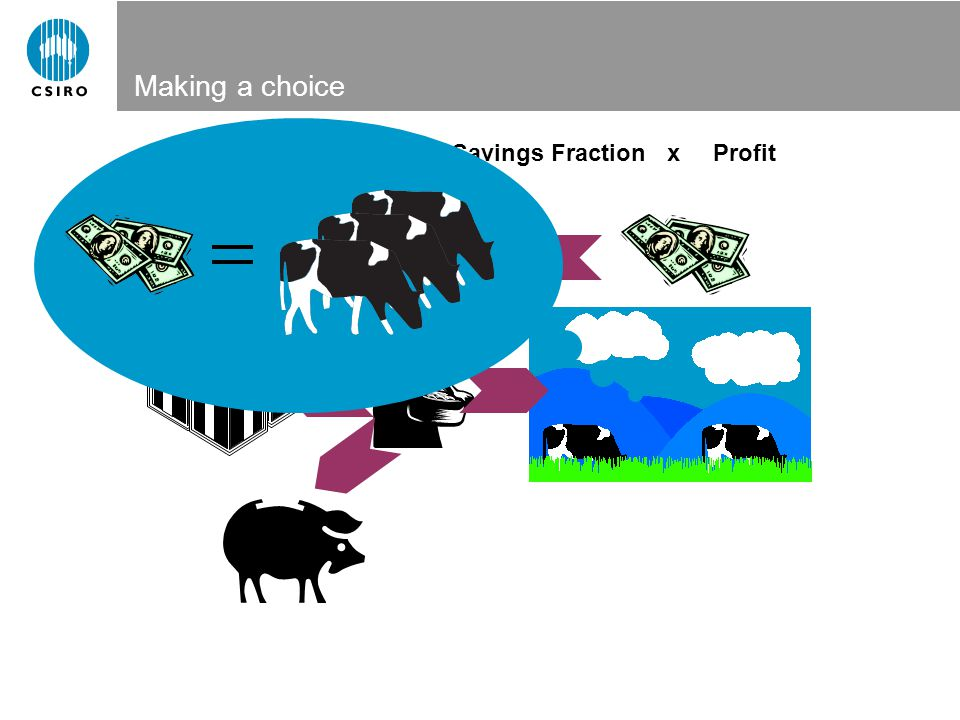 Making a choice Reinvestment=Savings FractionxProfit