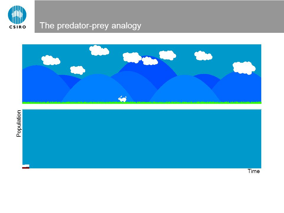 The predator-prey analogy Population Time