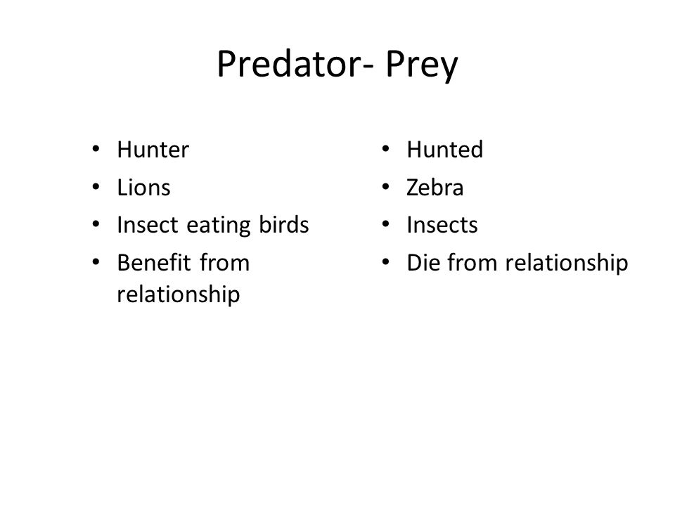 Predator & prey When the # of prey increases the # of predators will increase too because there is more food to support them.