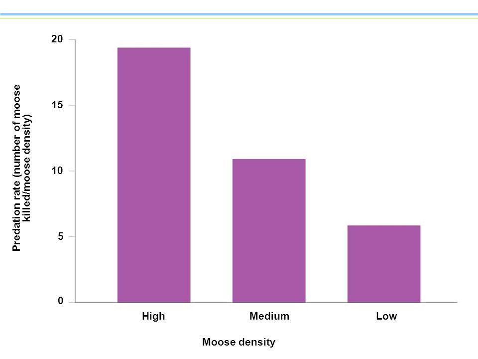 15 20 10 Predation rate (number of moose killed/moose density) 5 0 HighMediumLow Moose density