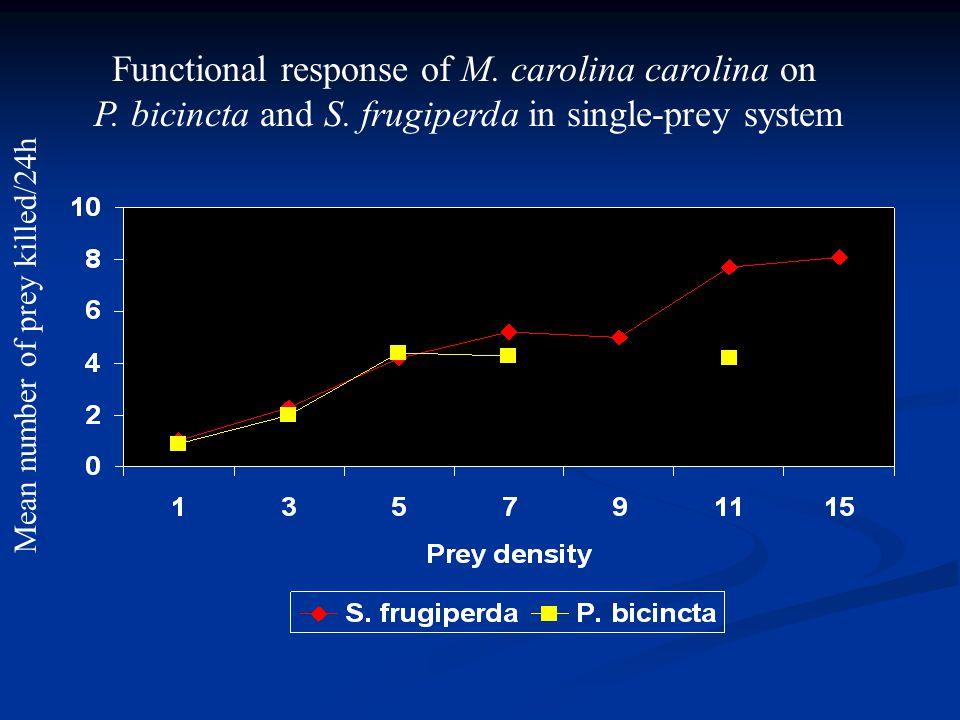 Functional response of M. carolina carolina on P.