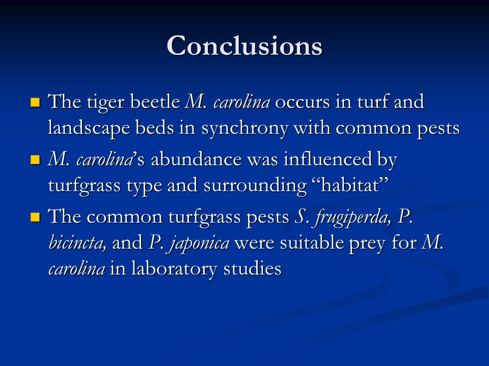 Conclusions The tiger beetle M.
