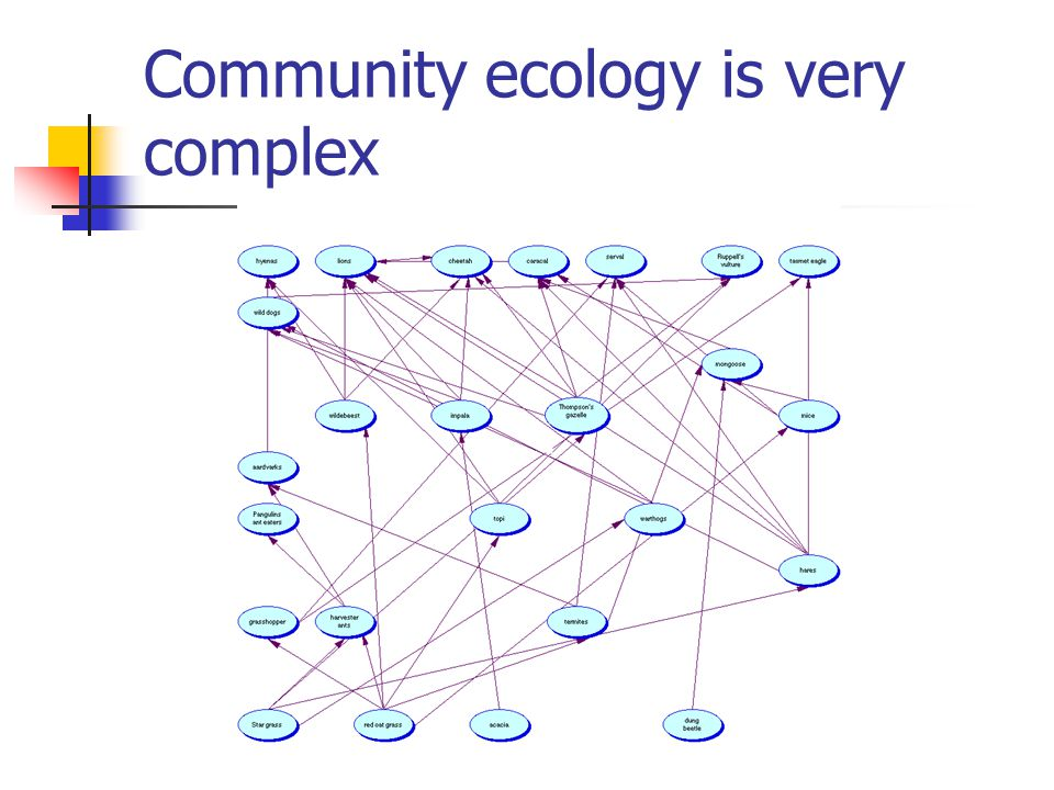 Community ecology is very complex