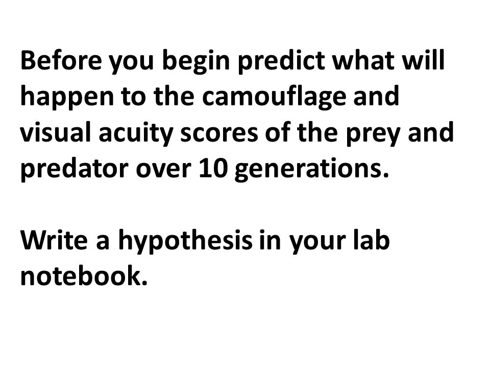 Before you begin predict what will happen to the camouflage and visual acuity scores of the prey and predator over 10 generations. Write a hypothesis