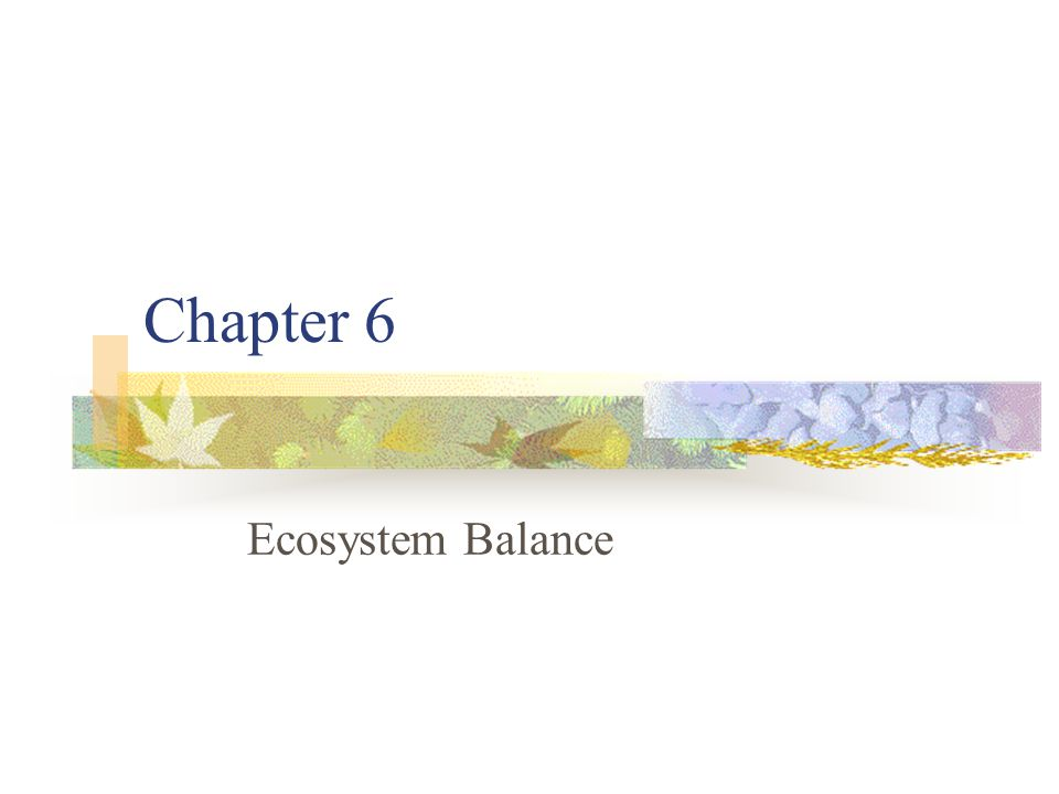 6.1 Relationships in the Ecosystem 6.2 Ecological Succession 6.3 Stability in the Ecosystem 6.4 Land Biomes
