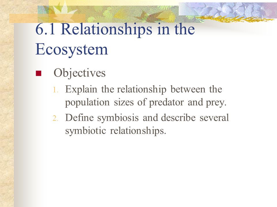 Relationships in the Ecosystem A complex web of relationships exist among all the species in an ecosystem.