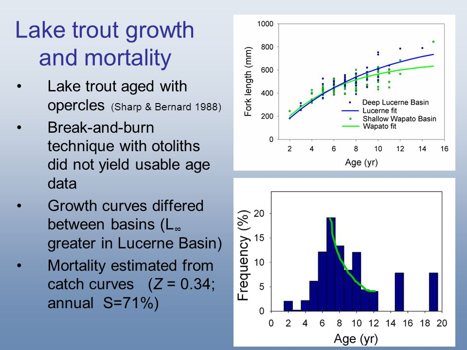 Lake trout growth and mortality Lake trout aged with opercles (Sharp & Bernard 1988) Break-and-burn technique with otoliths did not yield usable age d