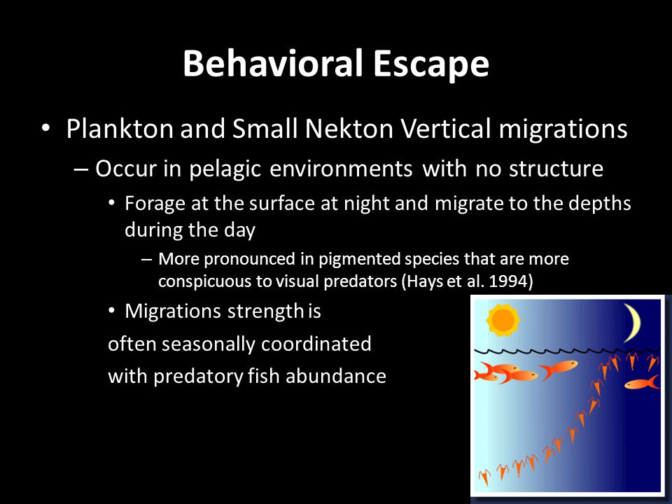 Behavioral Escape Plankton and Small Nekton Vertical migrations – Occur in pelagic environments with no structure Forage at the surface at night and migrate to the depths during the day – More pronounced in pigmented species that are more conspicuous to visual predators (Hays et al.