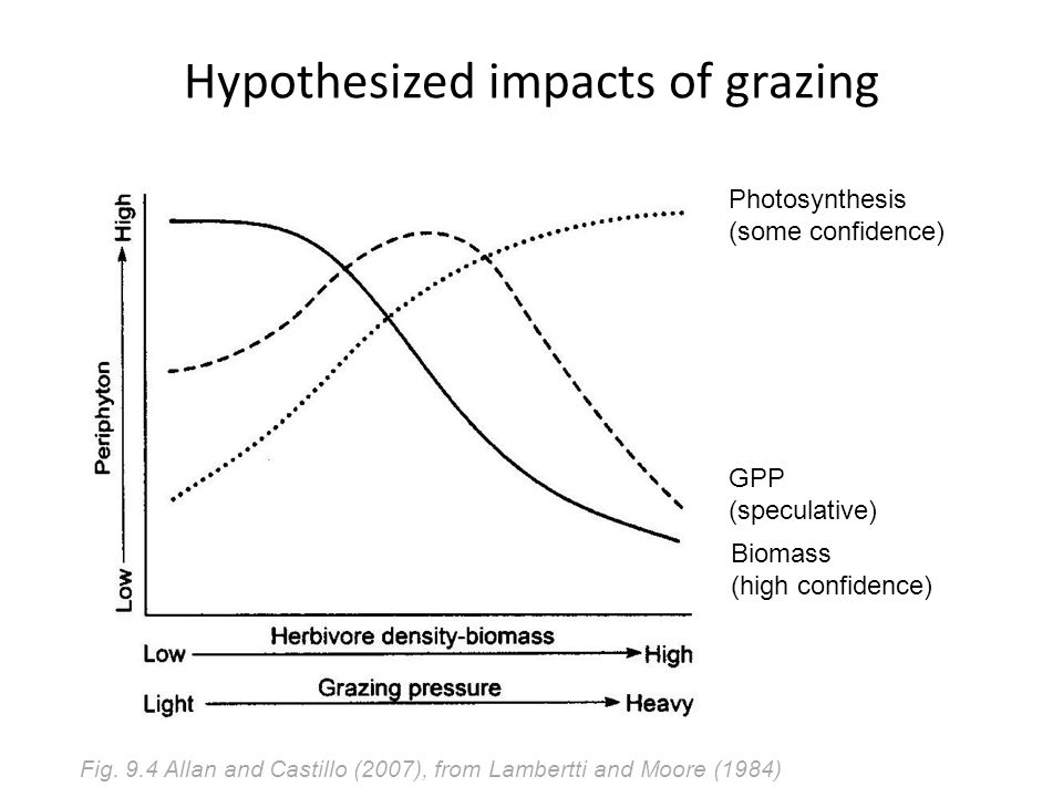 Hypothesized impacts of grazing Biomass (high confidence) Photosynthesis (some confidence) GPP (speculative) Fig.