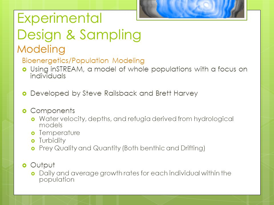 Experimental Design & Sampling Modeling Bioenergetics/Population Modeling  Using inSTREAM, a model of whole populations with a focus on individuals  Developed by Steve Railsback and Brett Harvey  Components  Water velocity, depths, and refugia derived from hydrological models  Temperature  Turbidity  Prey Quality and Quantity (Both benthic and Drifting)  Output  Daily and average growth rates for each individual within the population
