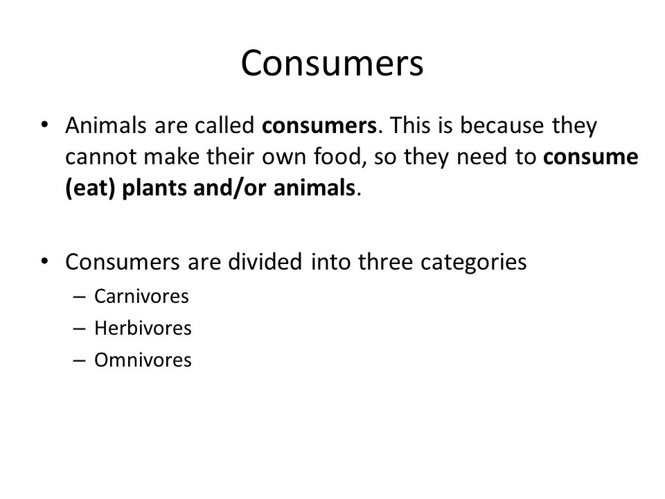 Consumers Animals are called consumers.