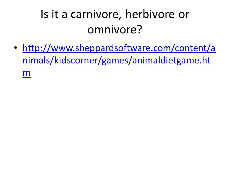 Is it a carnivore, herbivore or omnivore.