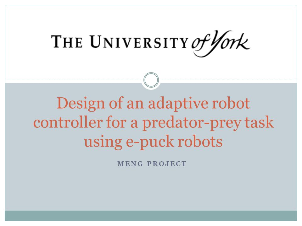 MENG PROJECT Design of an adaptive robot controller for a predator-prey task using e-puck robots