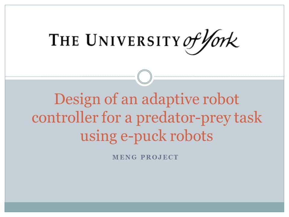 The Goal To design an adaptive robot controller capable of performing a predator-prey task, in a reconfigurable maze